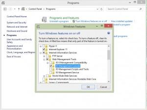 نصب iis روی سرور ویندوز